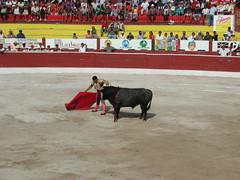 Bullfights At Las Ventas