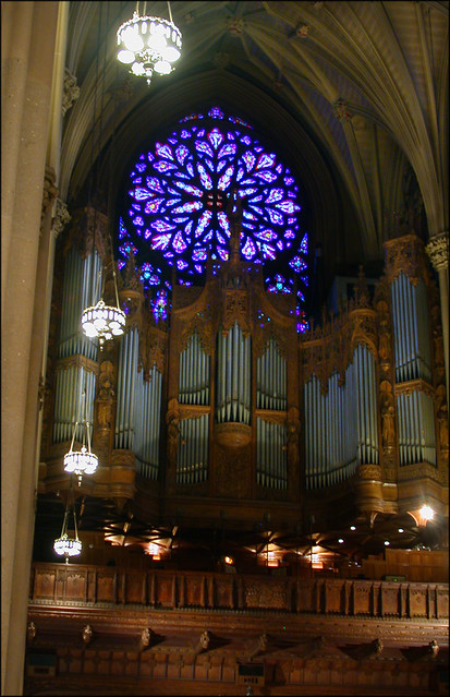Pipe Organ And Great Rose Window St Patrick S Cathedral
