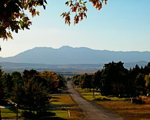 autumn trees light shadow mountains fall utah richmond cachevalley