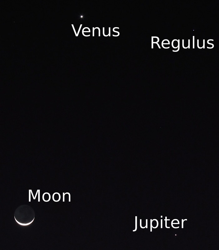 A moon, two planets and a star. The earth's moon, Jupiter, Venus, and Regulus all lined up this evening.