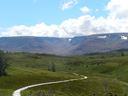 Gros Morne NP - lookout trail - 4