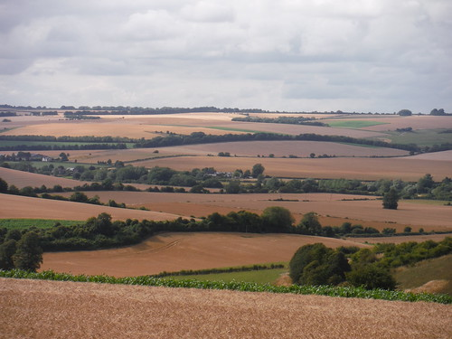 View into the Chalke Valley