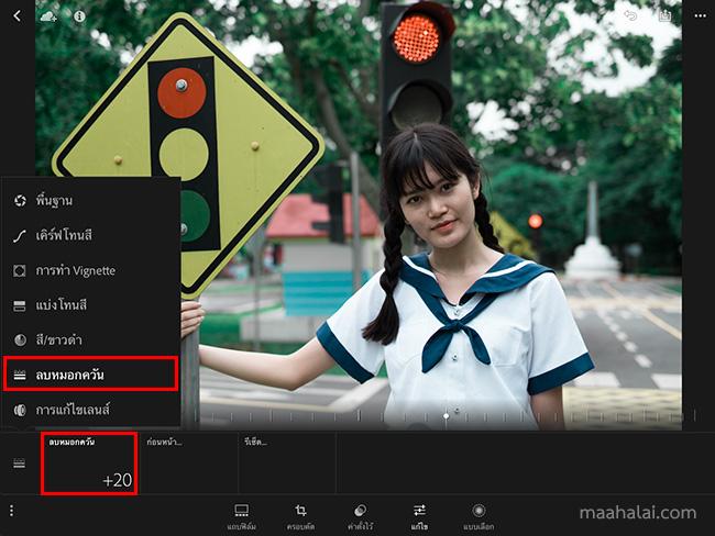 Lightroom Japan tone V2