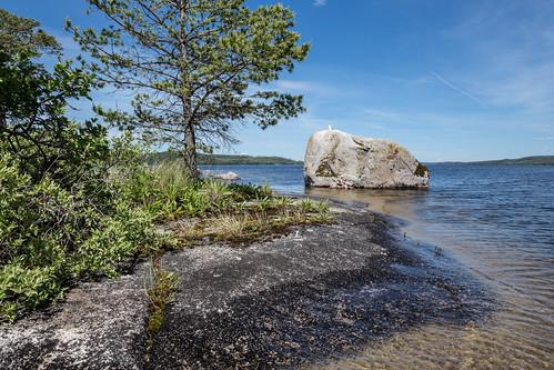 lake landscape sweden schweden shore sverige scandinavia östergötland sommen östergötlandslän torpön