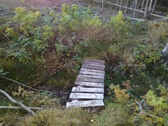 Stolpen Brua - Prestegårdsskogen