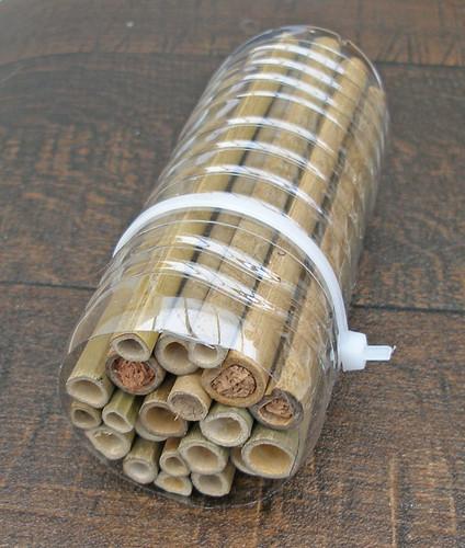 Experimental Bee House Cassette