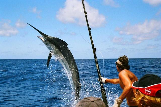 Pesca-Los-Cabos