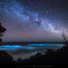Bioluminescence Under A Starry Sky by The Art of Night