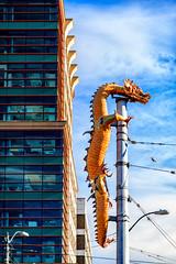Dragon Pole