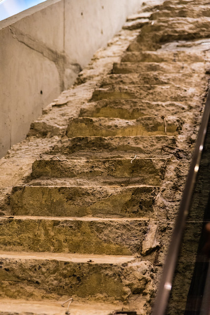 Survivor's Stair