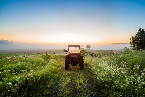 sunset summer tractor field june fog sunrise landscape scenery midsummer path maisema juhannus usva sumu