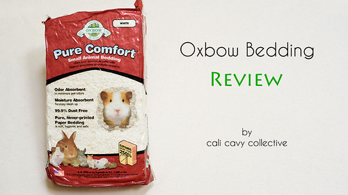 Oxbow Pure Comfort Small Animal Bedding for Guinea Pigs Review
