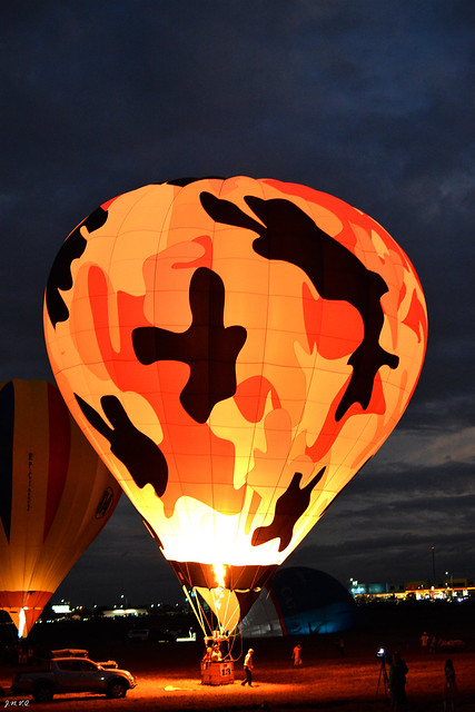 19th Hot Air Balloon Festival (11)