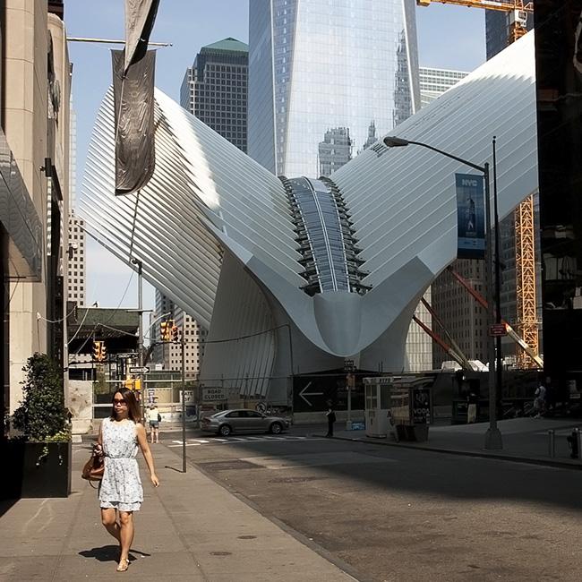 Calatrava, nyc