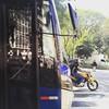 Ônibus de São Paulo #onibus #bus #saopaulo