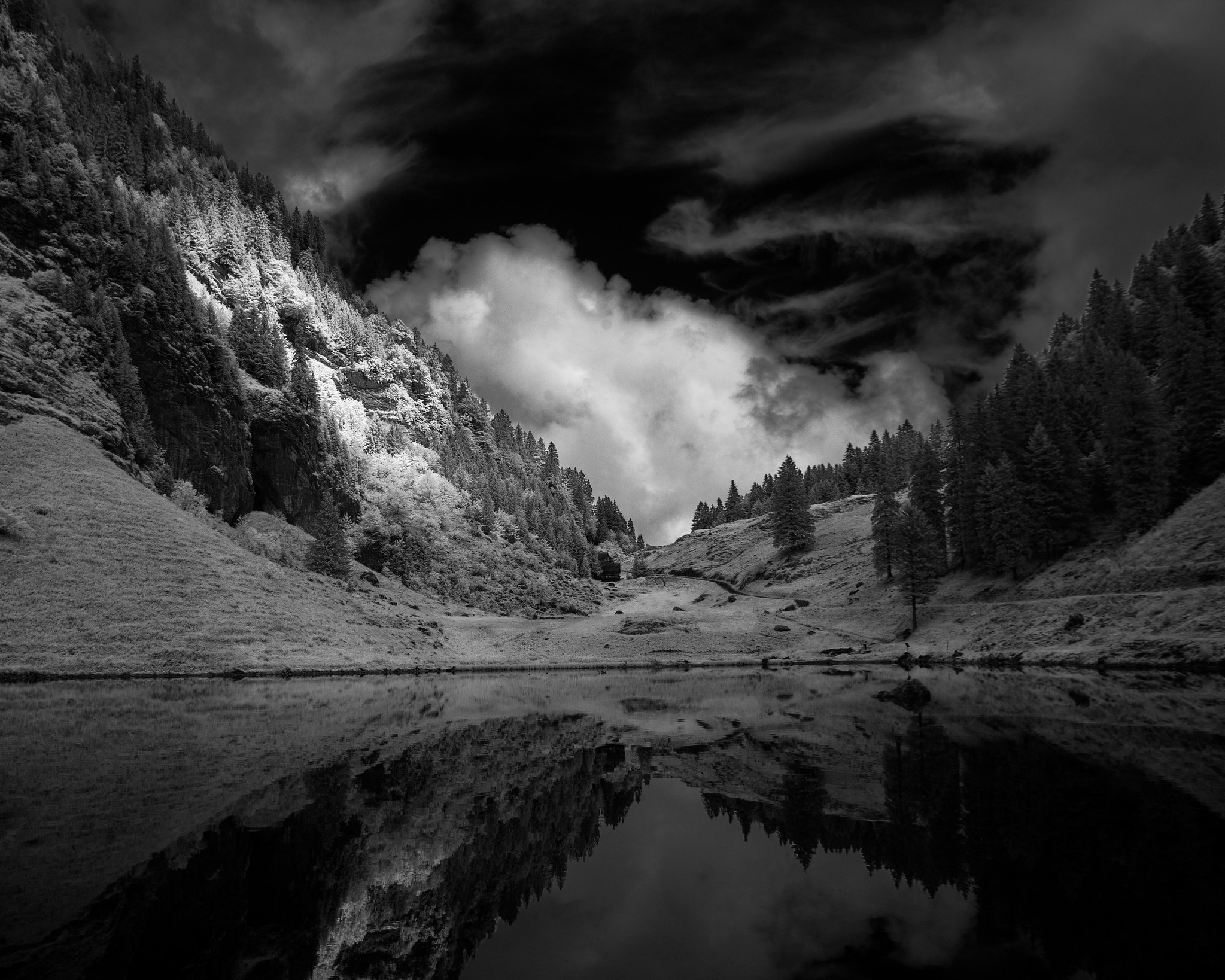 Talalpsee Reflection