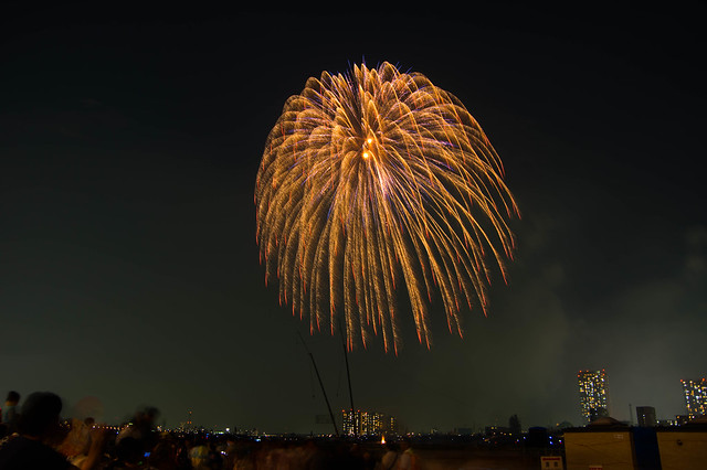 2015  江戸川区花火大会