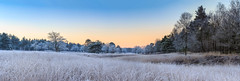 Dutch winter scenery