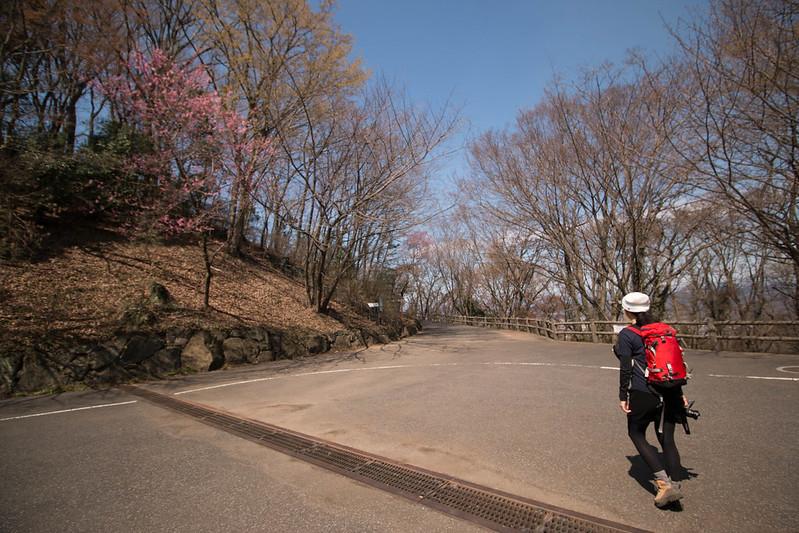 20160326-三毳山-0109.jpg