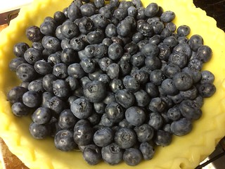 Blueberry Custard Pie in progress
