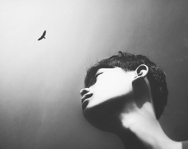 Big Faith Little Wings