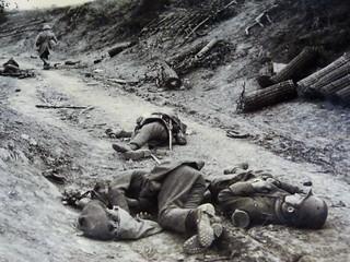 Foto de cadáveres en las trincheras (Foto I Guerra Mundial en el Norte de Francia)