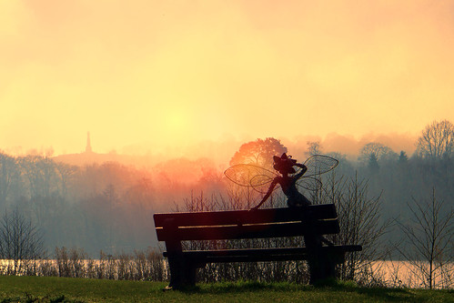 landscape sunrise fairy bright lake trees silhouette bench sculpture sun outdoor wire trentham gardens water winter