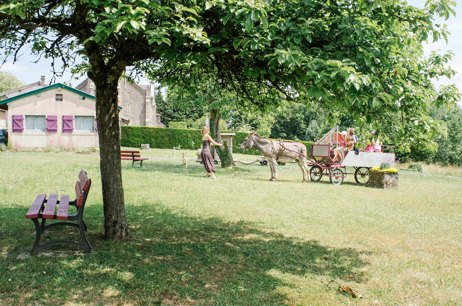 Randonner en Argonne - Balade en ânes - Démarrage au starter
