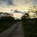Trail por Gañas