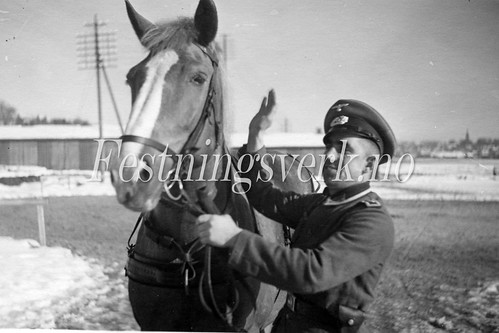 Sarpsborg 1940-1945 (309)
