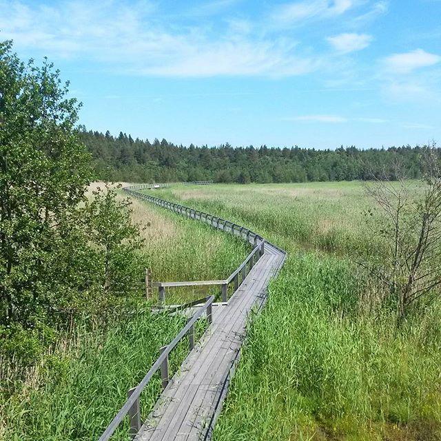 Selkämeren kansallispuisto, Pori, Suomi