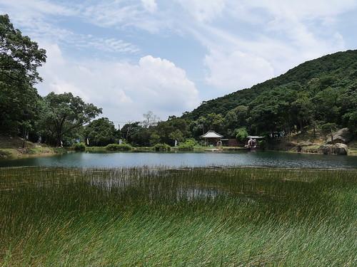 20150619 新山夢湖
