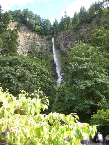 The wind blows Multnomah Falls westward