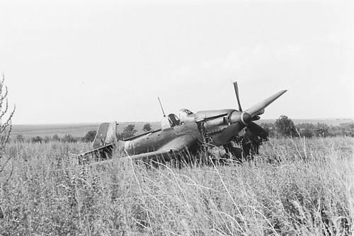 Ju 87 after an emergency landing in a field near belgorodskaya oblast 1943.