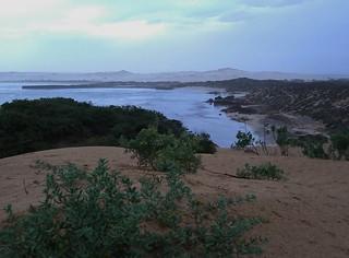 Cactus Beach IMGP0016 SA