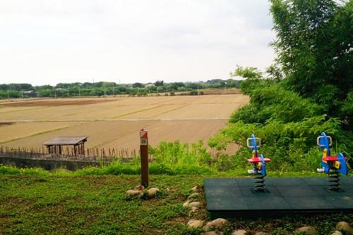 永安國小北側就是後壁稻田。李育琴攝