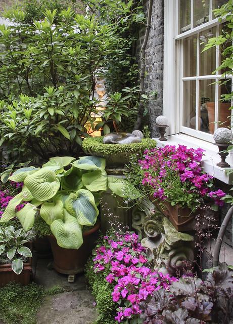 Spitalfields Gardens Group - garden6
