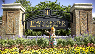 Hon Mention 2 - Feeling at Home at the Town Center Palm Coast - Duane Van Horn