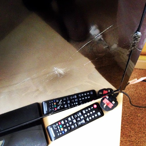 TV - 0. Rottweiler - 1. 📺🐕💨😱😏 A dog appeared on the TV screen, a dog attacked the TV. The TV crashed to the floor - fecked! #brokentv