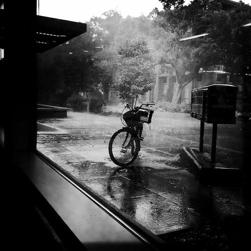 Wheels in the Rain