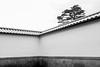 Kanazawa Castle by gm.jabs