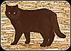 "Voulez-vous voir nos Chats? Chats Chattes Chatons Minou Minet Miné Maru Matou ""LOL Cat"" Cat Kitten feline felix Gato Gata Gatito Katze Plaudert Kätzchen Gatto Gatta Gattino Gato gatinho Котенок чатов кота by tamycoladelyves"