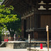 Prayer and Toji Temple, Kondo Hall (東寺 金堂)