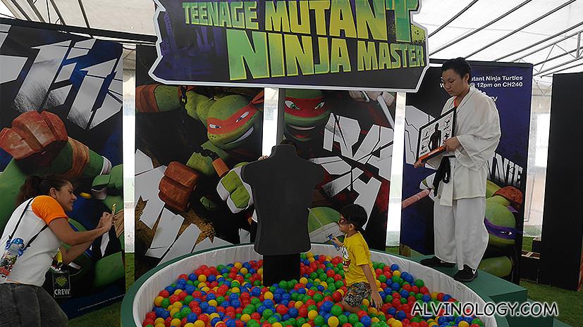 Ninja Master ball game