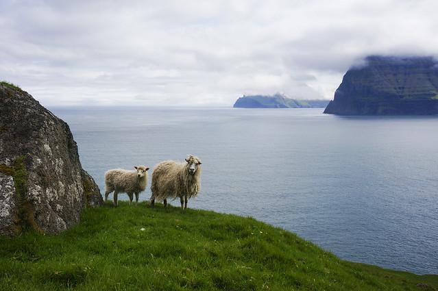 9. Faroe