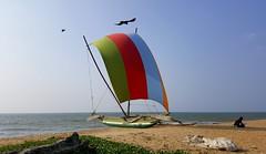Sri Lanka / ශ්රී ලංකා / இலங்கை