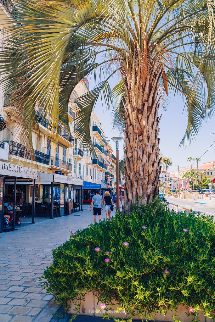 Beautiful streets of Cannes