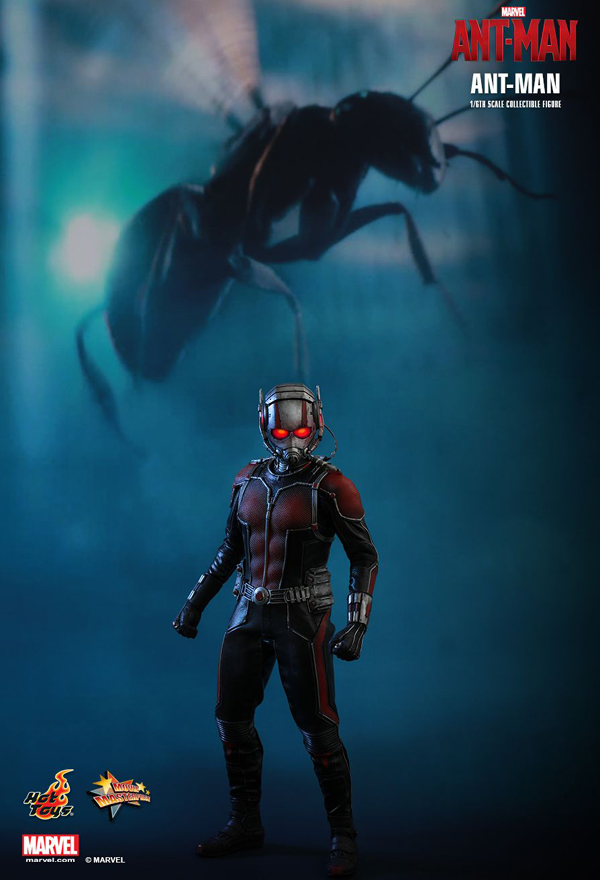 Hot _Toys_Ant_Man_04