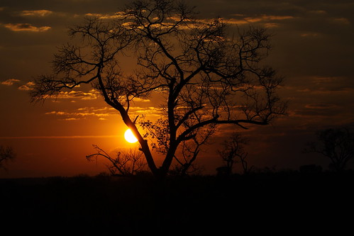 africa sunset game sol sunrise private do south reserve sabi por jul2015