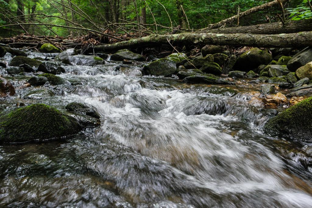 Hiking at Sanderson Brook Falls